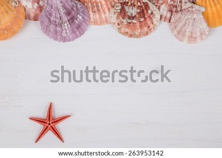 seashells on wooden surface - stock photo