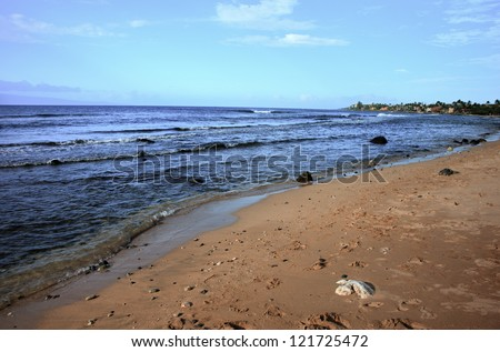Seashore at Kaanapali Beach on the Hawaiian Island of Maui