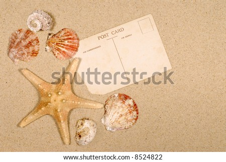 Seashore background with postcards, seashells and starfish (please note that the postcards are vintage and therefore faded and slightly stained).