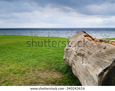 Seashore of the Oresund Strait - stock photo