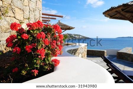 Seaside Flower - stock photo