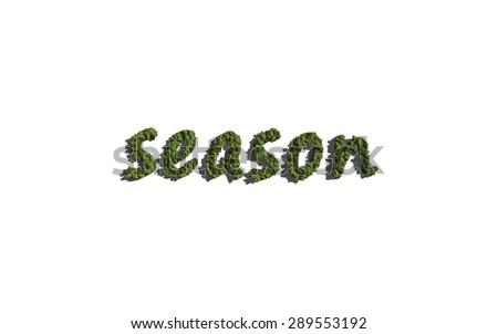 season text tree with white background concept of typography - stock photo