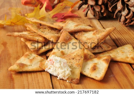 Seasoned pita bread chips with gourmet cream cheese vegetable  dip. - stock photo