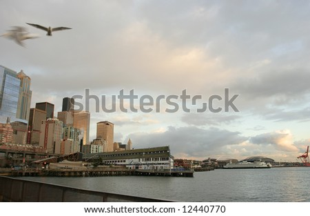 Seattle Harbor at Sunset with blurred Seagulls flying above the fence - stock photo
