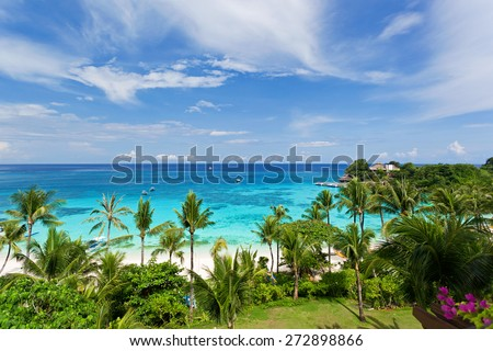 Seaview from above, tropical beach with coconut palms - stock photo