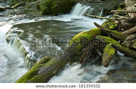 Secluded small valley waterfall with mossy fallen logs - stock photo