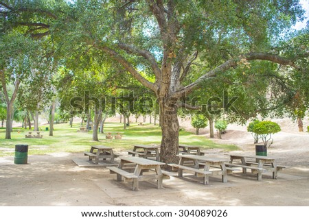 Section of picnic tables at a green tree park in Val Verde, southern California.
