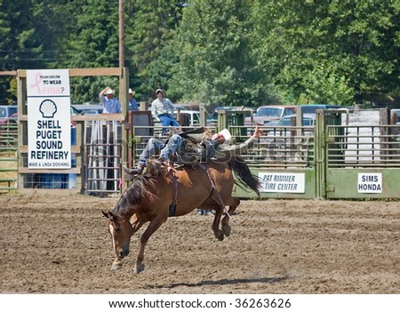 SEDRO WOOLLEY, WA - JULY 4: - An unidentified participant, is laid out and holding on tight to this bucking horse at the 75th Loggerodeo. The event took place July 4, 2009 in Sedro Woolley, WA.