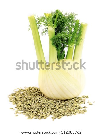 Seeds and a fennel root on a white background - stock photo
