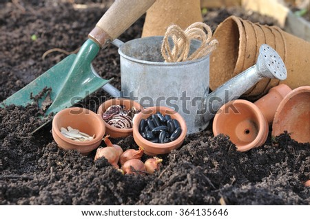 seeds, bulbs and garden accessories in garden soil - stock photo