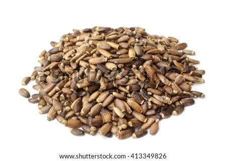 Seeds of a milk thistle (Silybum marianum, Scotch Thistle, Marian thistle) on white background - stock photo