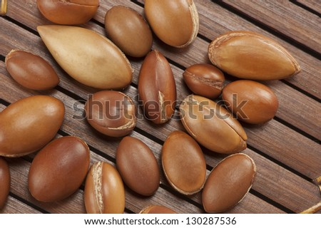 seeds of argan,Morocco plant,a close up - stock photo