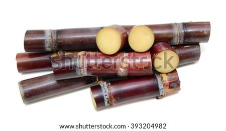 segment Sugar cane isolated on white background - stock photo
