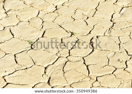 selective focus of cracked clay on earth - stock photo