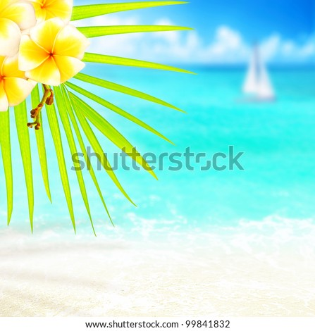 Selective focus on palm tree branch over tropical beach background, blue sea landscape, natural abstract card, floral border with frangipani plant, conceptual image summer of vacation and travel - stock photo