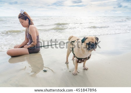 Selective focus on pug dog playing and touchy on summer sea beach - stock photo