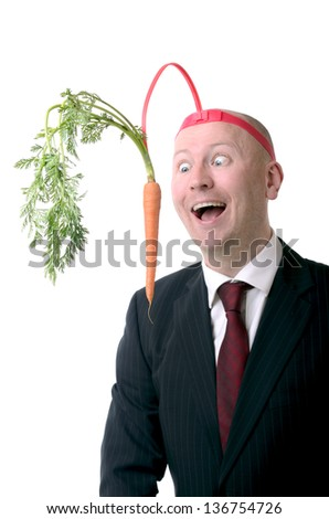 self motivation of dangling a carrot on a stick isolated on white - stock photo