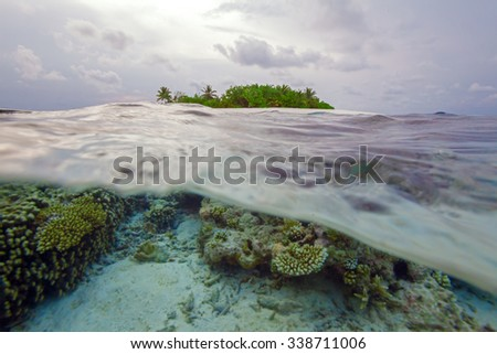 Semi Underwater Scene of tropical Island and Reef with small fishes, Maldives
