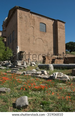 Senate house and poppies, Rome Forum - stock photo