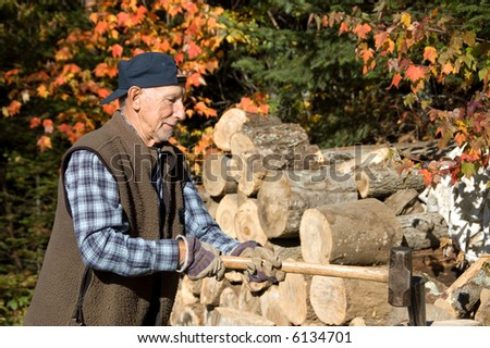 senior chopping woods for the Winter in Quebec, Canada