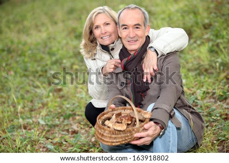 Senior couple collecting mushrooms in the forest - stock photo