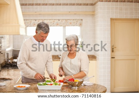 Senior couple cooking in the kitchen - stock photo