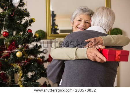 Senior couple hugging beside their christmas tree at home in the living room - stock photo