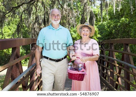 Senior couple in the park, carrying a picnic basket.