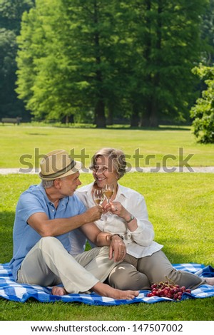 Senior couple on romantic picnic in sunny park - stock photo