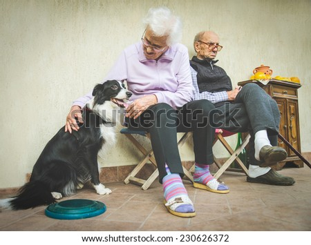 Senior couple playing with dog - Grandparents relaxing at home and taking care of playful dog - Candid image of domestic life - stock photo