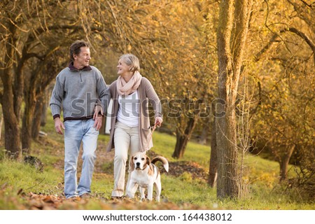 Senior couple walking their beagle dog in autumn countryside - stock photo