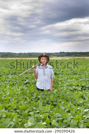 Senior farmer carrying fork on the shoulder and walking in green soybean field - stock photo