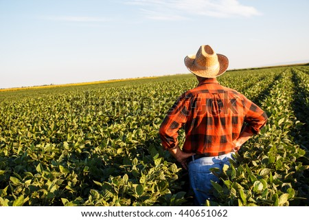 Senior farmer in a field looking into the distance. - stock photo