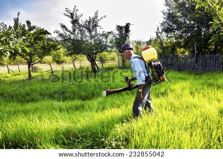 Senior farmer spraying the orchard with chemicals  - stock photo