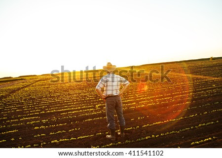 Senior farmer standing in a field and looks into the distance - stock photo