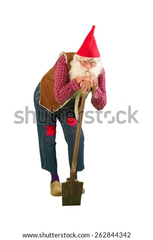 Senior garden gnome with beard and shovel - stock photo