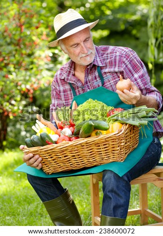 Senior gardener with various vegetables testing the Quality