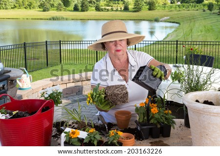 Senior lady gardener repotting houseplants removing them from the containers they have outgrown and combining them into large ornamental planters on her outdoor patio - stock photo
