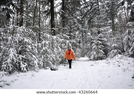Senior woman walking in a snowy forest with pine-trees - stock photo