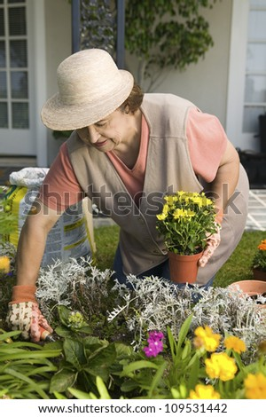 Senior woman working in her own garden - stock photo