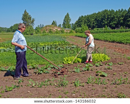 Seniors couple working with hoe and hand tiller in garden