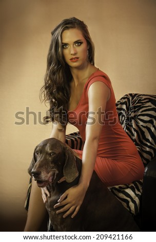 Sensual brunette woman in sexy red dress sitting on a zebra print chair with a brown pointer dog next to her and her long curly hair cascading around her - stock photo