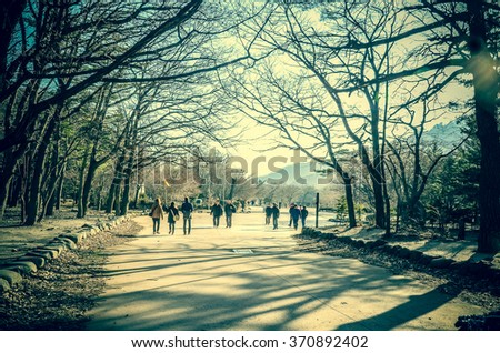 Seoraksan National Park. High key blurred image of people walking in the park. Unrecognizable faces.With vintage hdr color effect