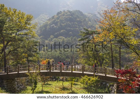Seoraksan, South Korea, October 31, 2015: Seoraksan National Park is a national park in South Korea. It listed by the South Korean government with UNESCO as a tentative World Heritage site.