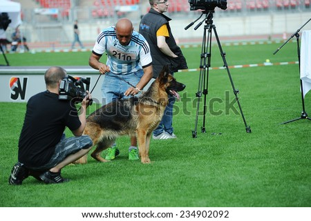 SEP 07, 2014 Nurnberg Biggest german shepherd dog show in Germany. Participants having video set for tv - stock photo