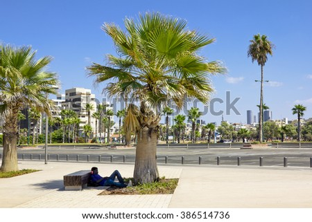 Sep 20, 2012 .Tel Aviv, Israel: A man sleeping in the shade of palm trees on the promenade in tel Aviv.Israel.