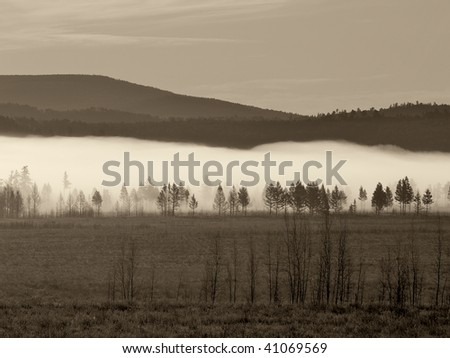 Sepia toned view of the sunrise in forest on Russian Far East. - stock photo