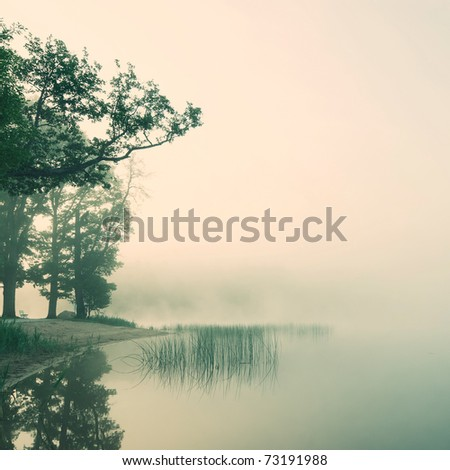 serene misty morning on a lakeside - stock photo