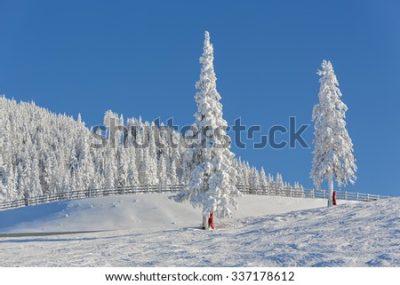 Serene sunny alpine winter landscape with snow covered fir trees and wooden fence on a ski slope in Poiana Brasov resort, Postavaru mountain, Romania. - stock photo