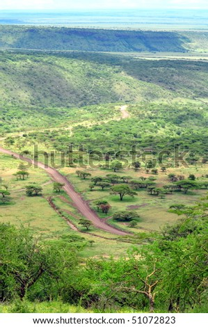 Serengeti National Park landscape. Tanzania - stock photo